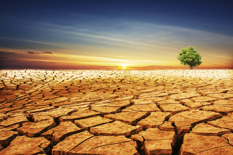drought, water, desert, drought emergency