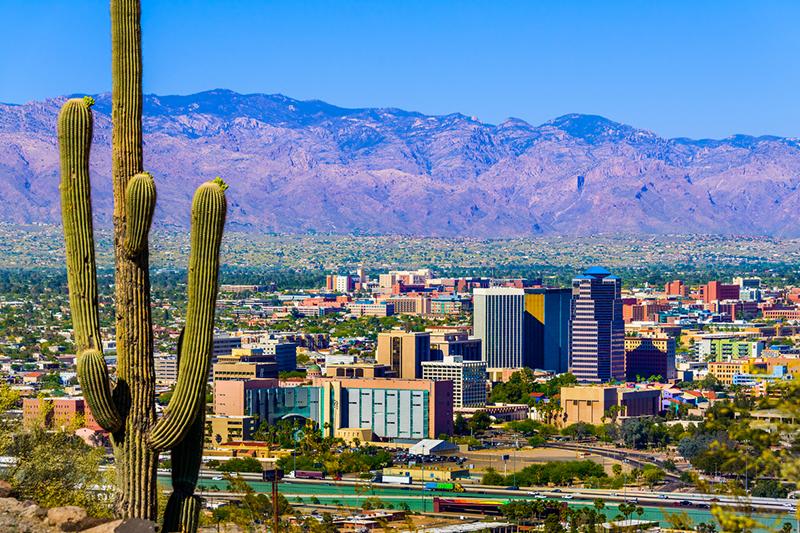 Tucson, Arizona, cityscape, city, cactus, desert, mountains