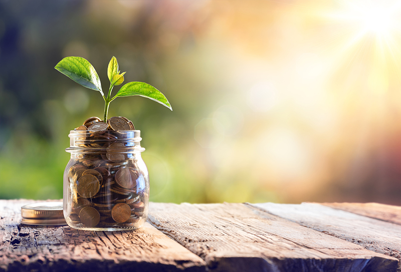 cost savings, plant, money, coins, growth, profit