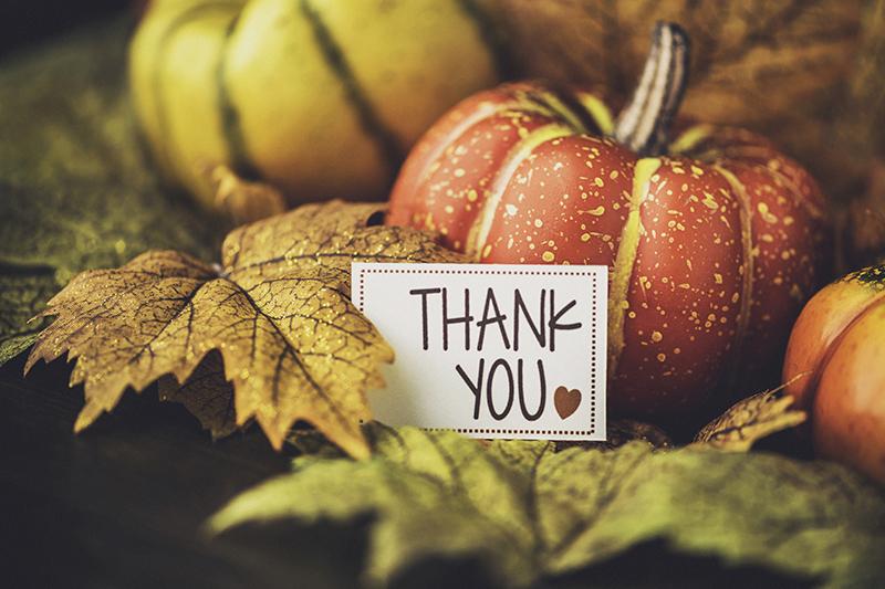 thanks, thank you, pumpkins, leaves, fall, autumn, thanksgiving