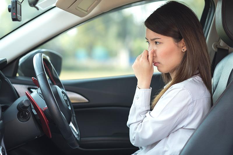 smell, odor, car, driver