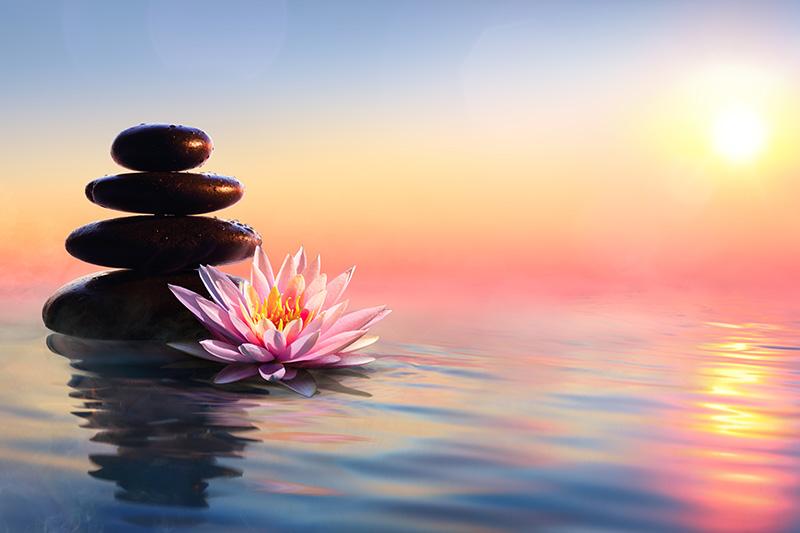 zen, lotus, rocks, water