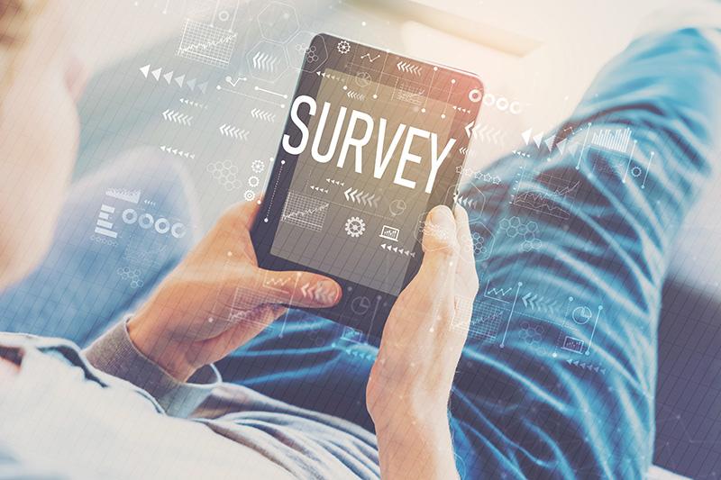 survey, tablet, person
