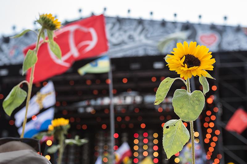 rock concert, Woodstock, peace