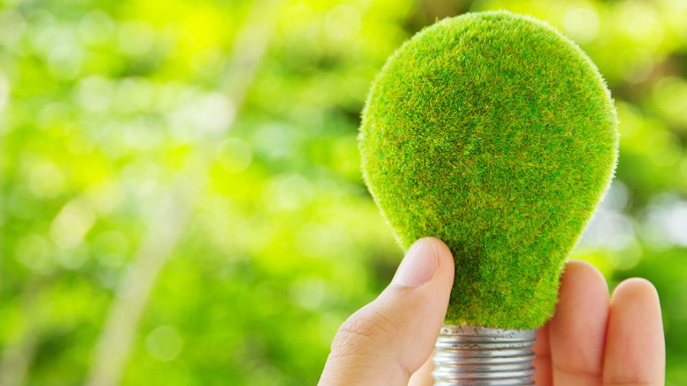 green energy, light bulb, SBA 504 Green Loan Program