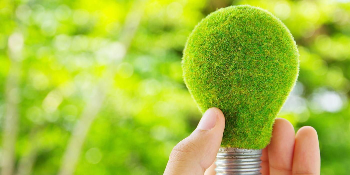 green energy, light bulb, SBA 504 Green Loan Program