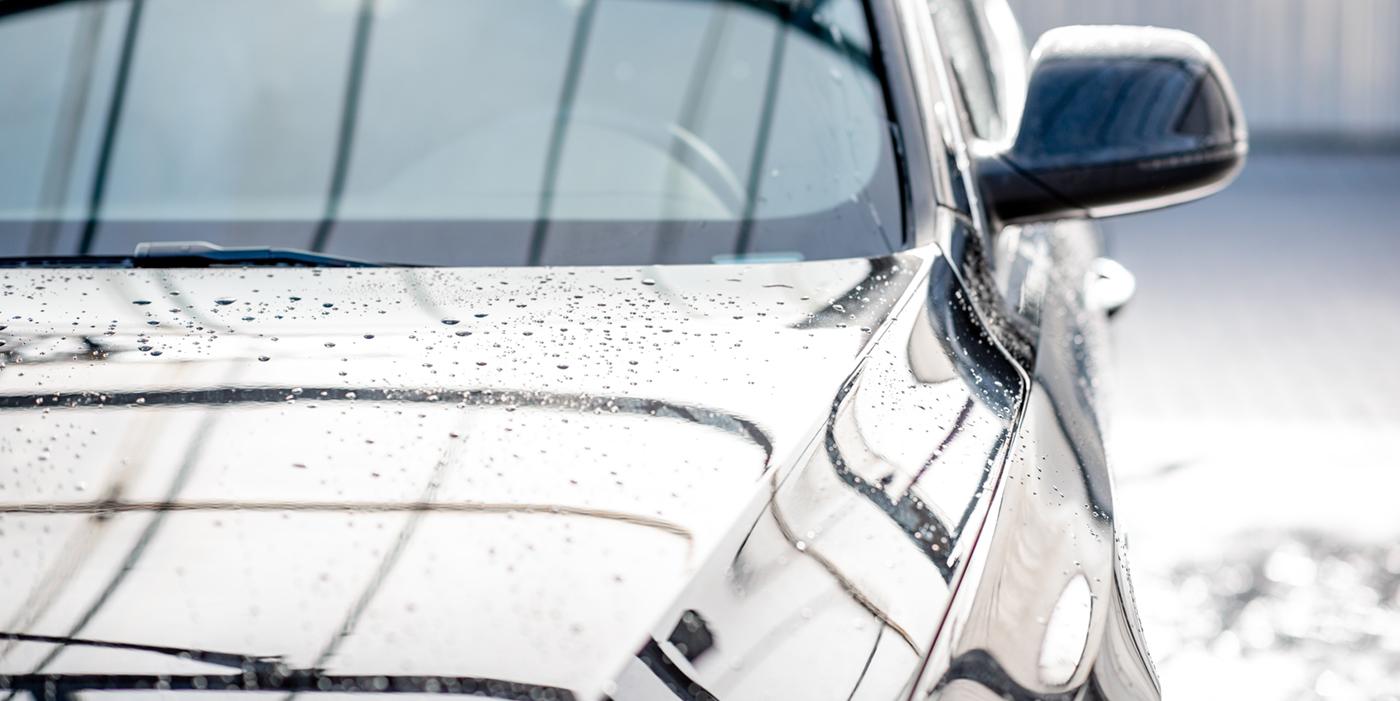 shine, water, rain, droplets, water retention, beading